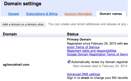google-domain-settings
