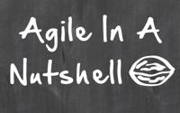 Agile nutshell titlepage