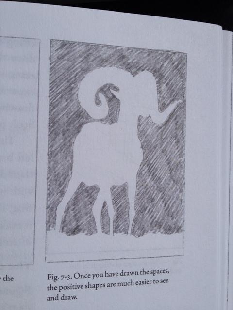 finished-sheep